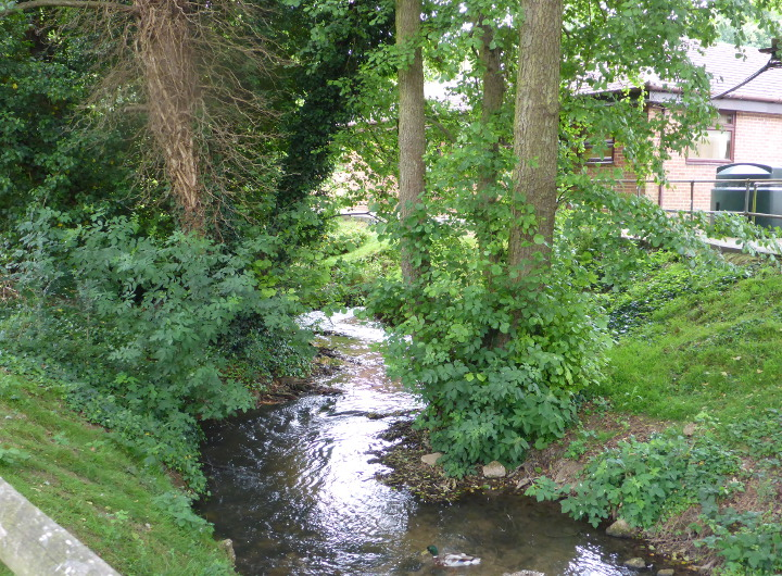 Image of an ordinary watercourse