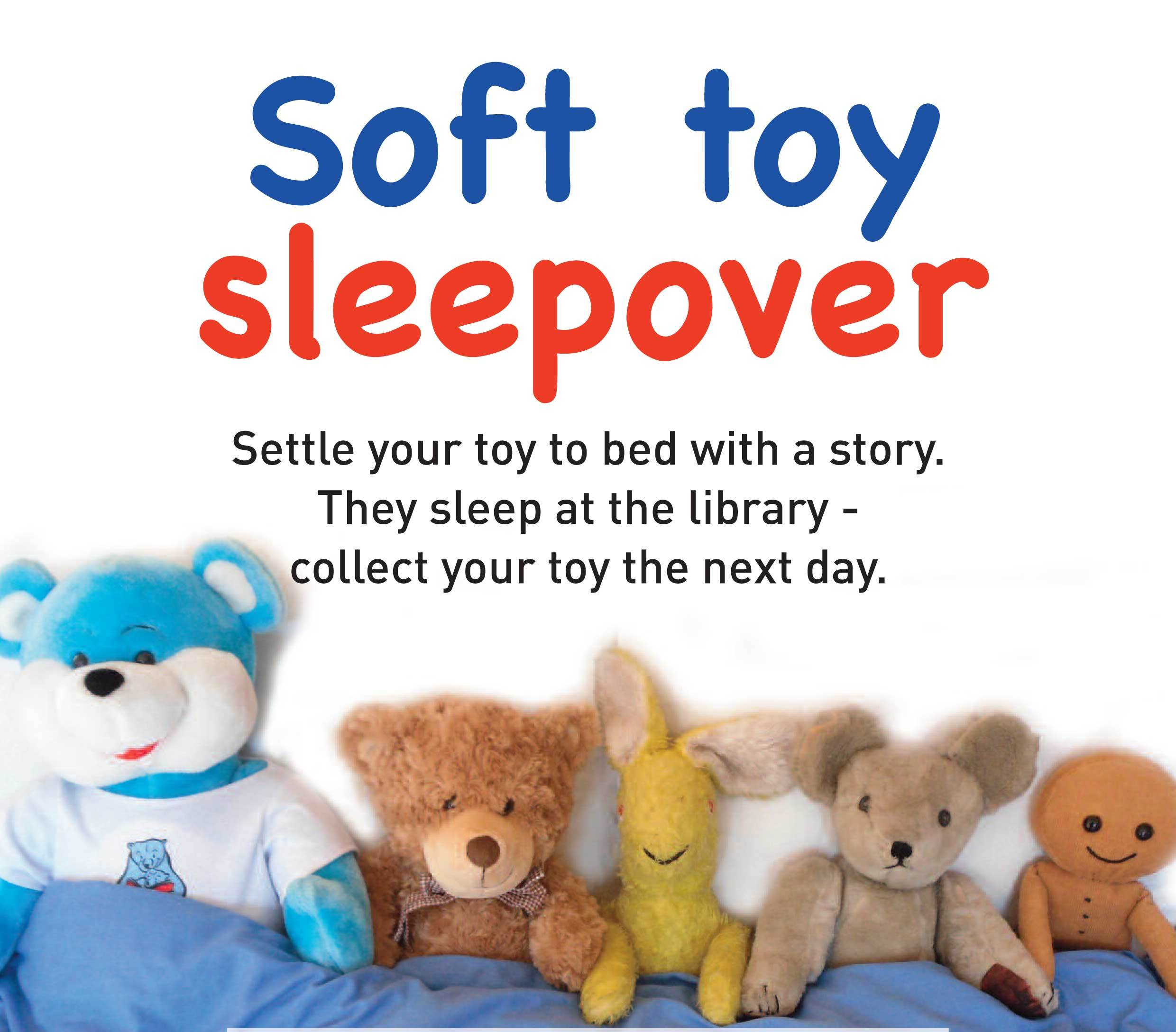 Soft toy sleepover