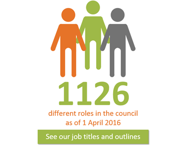 Number of different council roles