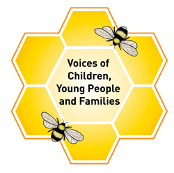 Voice of the children logo