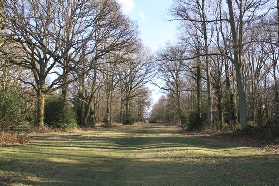 Chorleywood Common 3456x2304