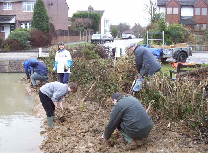shenley-cage-pond-introducing-native-plants