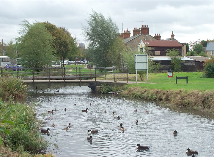 walsworth-common-ducks-on-river-purwell