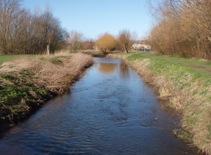 walsworth-common-buffer-strips-on-river-purwell