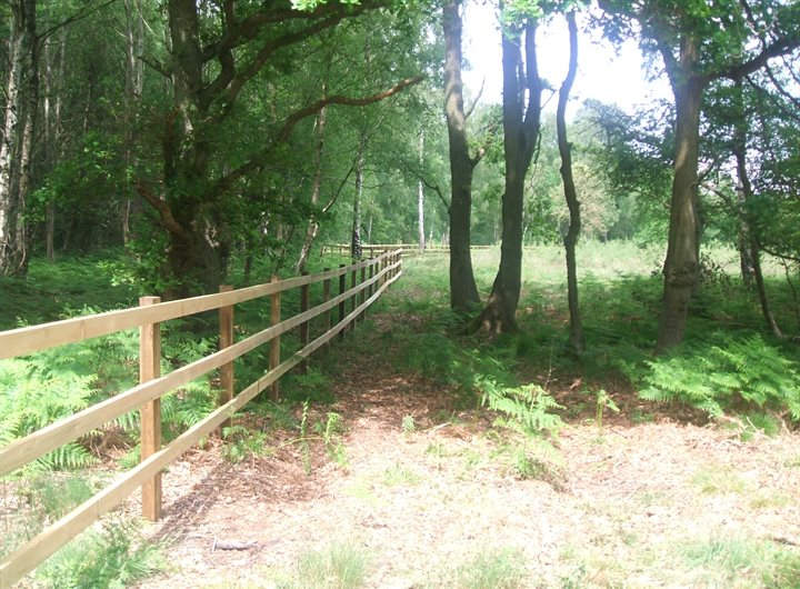 Fence through common land