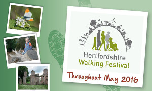 Hertfordshire Walking Festival May 2016